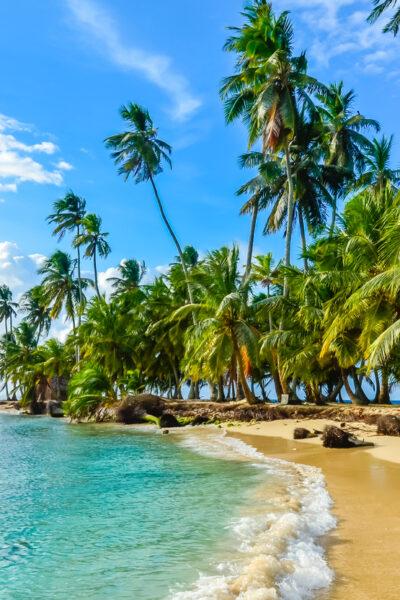 Bespoke Decking in Panama